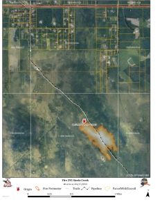 Fire 295 Steel Creek_20140617_1540