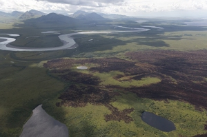 Brown and black burn from the Noatak Fire Fire