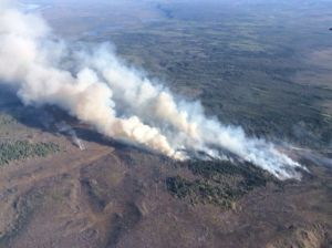 Here's an aerial photo of the Bolgen Creek Fire taken on Saturday by Division of Forestry Air Attack Officer Bruce Smith. The fire grew from 160 acres to 600 acres as of 10 p.m. Saturday.