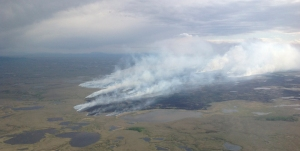 The Bogus Creek fire on Wednesday, June 3, 2015. Alaska Division of Forestry photo