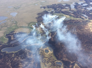 The Bogus Creek Fire burns Sunday, June 7, 2015, in the Yukon Delta National Wildlife Refuge in southwest Alaska. The 25,260-acre fire was started by lightning on May 31st. Matt Snyder/Alaska Division of Forestry