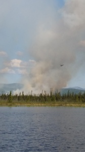 Smoke rises from the Tanana Slough Fire burning northwest of the community of Dot Lake on Monday 15, 2015. Don York/Alaska Division of Forestry