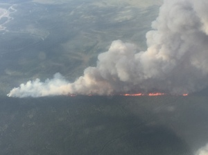 The Healy Lake Fire about 30 miles southwest of Delta Junction was estimated at 2,500 acres on Wednesday afternoon and is expected to get bigger.