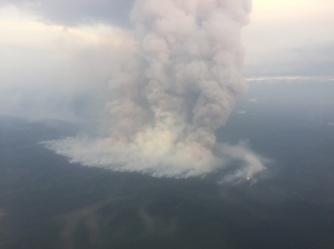 The Healy Lake Fire was putting up a smoke column of more than 20,000 feet Wednesday morning. Alaska Division of Forestry photo.