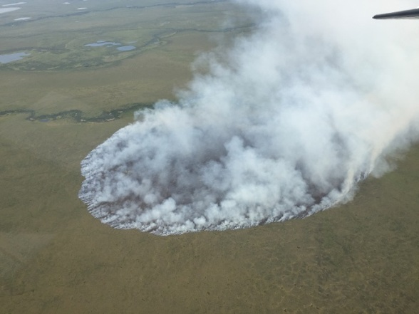 Aerial view of the Eli River Fire