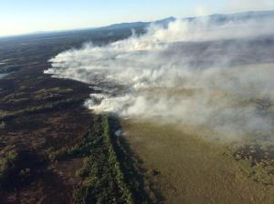 At 31,059 acres and counting, the Whitefish Lake 1 Fire is one of 31 fires in Alaska that are currently over 20,000 acres.