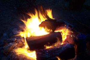 Keep campfires small and away from any vegetation that may catch fire. Drown them with water and stir them until they are cold to the touch before leaving.