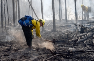 Members of the Fairbanks #1 crew mop up along the perimeter of the Tetlin River Fire on Monday, June 20, 2016. Photo by Sam Harrel/Alaska Division of Forestry