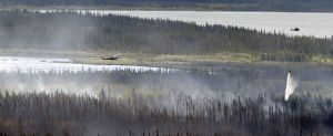 A helicopter equipped with a water dropping bucket douses hotspots on the Tetlin River Fire as another passes by Tuesday, June 21, 2016. Alaska DNR/Division of Forestry Sam Harrel