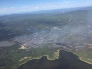 An aerial photo of the approximately 1,000-acre Tetlin River Fire taken at around 11:30 a.m. on Saturday. Photo by Tony Chapman/BLM Alaska Fire Service