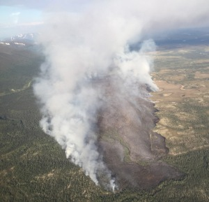 A photo taken Friday shows the Warren Creek Fire in northwest Alaska.