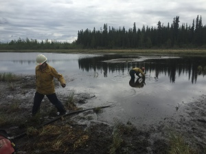 Ashley Dale, left, and Carrie Hale rig a pump in a pond while working on the Tetlin River Fire near Tok. Photo by Jenny Moser/Alaska Division of Forestry