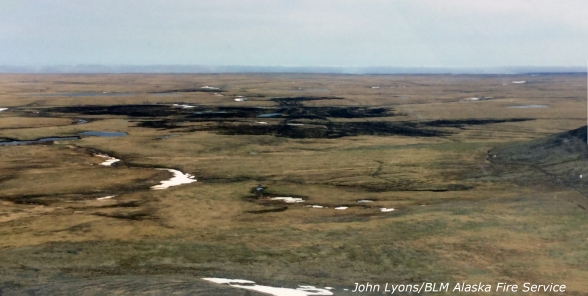 BLM Alaska Fire Service Air Tactical Supervisor John Lyons took this photo on June 15, 2016 of one of two fires that burned in tussock tundra on the Saint Lawrence Island.