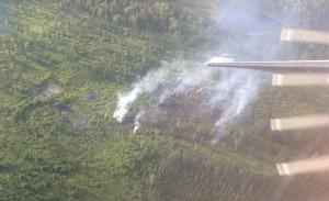 An aerial photograph of the Twin Islands Lake Fire near Point MacKenzie. The fire was reported just before 8 p.m. Tuesday. Firefighters are mopping up the fire today. Photo by Jason Jordet/Alaska Division of Forestry