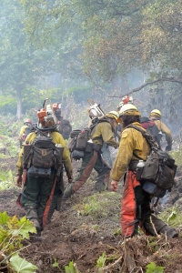A squad of sawyers with the Tahoe Hotshots climb up the left flank of the McHugh Fire on Thursday, July 21, 2016.The fire, just south of Anchorage, is burning in steep, rocky terrain littered with large downed trees. Sam Harrel/Alaska Division of Forestry
