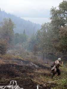 A member of the Pioneer Peak Interagency Hotshot Crew hauls several 50-foot length of hose along the left flank of the McHugh Fire on Thursday, July 21, 2016. The fire, just south of Anchorage, is burning in steep, rocky terrain littered with large downed trees. Sam Harrel/Alaska Division of Forestry