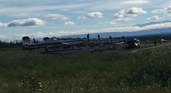 Four Fire Boss water-scooping planes stand-by if needed. Photo: Carrie Hale, Alaska Division of Forestry