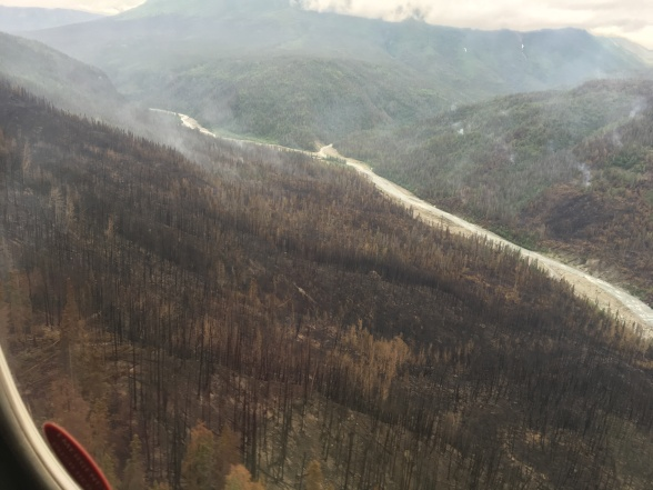 The Steamboat Creek Fire smoldered near the Chakina River.