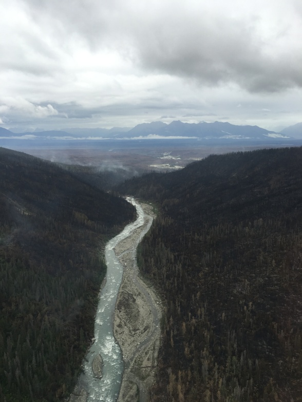 The Steamboat Creek Fire  smolders in the Chakina River drainage on July 25, 2016.