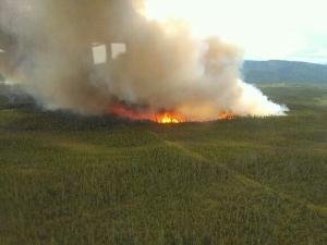 A photo of the Tok River Fire looking south. Photo by Alaska Division of Forestry