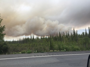 A photo of the Tok River Fire taken from the Tok Cutoff Highway. The fire was about 1 1/2 miles south of the Tok Cutoff as of 6:30 p.m. Photo by Clinton Northway