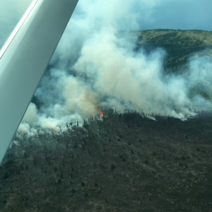 An aerial photo of the George River Fire  burning approximately 90 miles southwest of McGrath taken Friday. Kourtney Straight/Alaska Division of Forestry