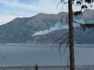 An air tanker drops a load of retardant on the wildfire burning near McHugh Creek along the Seward Highway just south of Anchorage.