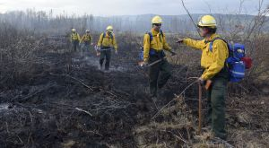 Members of the Fairbanks #1 crew work on the Tetlin River Fire on Monday, June 20, 2016. Alaska DNR/Division of Forestry Sam Harrel