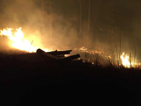 An early-morning photo of the Moose Creek Fire near Sutton. Firefighters from the Alaska Division of Forestry and local fire departments are working to contain the blaze, which was reported at 2:10 a.m. Alaska Division of Forestry photo