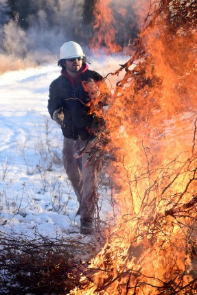 Bureau of Land Management Alaska Fire Service specialist Brian Pitts throws more wood on burning piles of brush as part of a prescribed burn project in U.S. Army Alaska's Donnelly Training Area near Fort Greely Nov. 4, 2016. The piles were created by U.S. Army Alaska hand crews working to remove dead and decaying vegetation and black spruce in an effort to reduce the chances of a wildfire on military lands