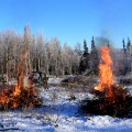Bureau of Land Management Bureau of Land Management Alaska Fire Service specialist Matt Kilgriff shoots a stream of flaming gel from the Terra Torch to burn piles of brush and trees as part of a prescribed burn project in U.S. Army Alaska's Donnelly Training Area near Fort Greely Nov. 4, 2016. The piles were created by U.S. Army Alaska hand crews working to remove dead and decaying vegetation and black spruce in an effort to reduce the chances of a wildfire on military lands.