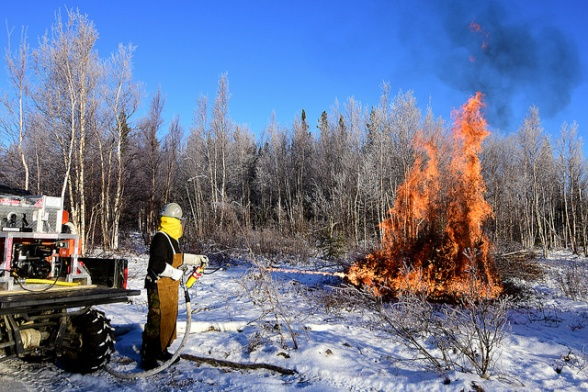 Bureau of Land Management Bureau of Land Management Alaska Fire Service specialist Matt Kilgriff shoots a stream of flaming gel from the Terra Torch to burn piles of brush and trees as part of a prescribed burn project in U.S. Army Alaska's Donnelly Training Area near Fort Greely Nov. 4, 2016. The piles were created by U.S. Army Alaska hand crews working to remove dead and decaying vegetation and black spruce in an effort to reduce the chances of a wildfire on military lands. AFS provides wildland fire management for 1.6 million acres of military withdrawn public land under an interagency service agreement with U.S. Army Alaska. (Army photo/John Pennell)