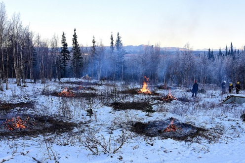 Bureau of Land Management Bureau of Land Management Alaska Fire Service specialists monitor burning piles of brush as part of a prescribed burn project in U.S. Army Alaska's Donnelly Training Area near Fort Greely Nov. 4, 2016. The piles were created by U.S. Army Alaska hand crews working to remove dead and decaying vegetation and black spruce in an effort to reduce the chances of a wildfire on military lands. AFS provides wildland fire management for 1.6 million acres of military withdrawn public land under an interagency service agreement with U.S. Army Alaska. (Army photo/John Pennell)