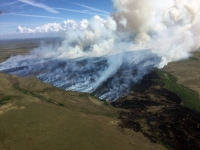 The Romanoff Fire (#234) is burning in fire within the Yukon Delta National Wildlife Refuge on the south side of Port Romanof on the Norton Sound coast. Photo by Ryan McPherson//BLM Alaska Fire Service