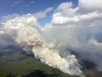 Southwest winds push the Nowitna Fire (#336) on Monday afternoon, July 17, 2017. The fire is located 48 miles southeast of Ruby in the Nowitna National Wildlife Refuge. Jake Livingston / BLM Alaska Fire Service