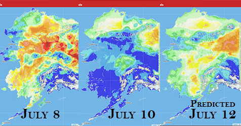 This graphic shows the Fine Fuel Moisture levels in Alaska for July 8, today and predicted for July 12 as provided by the Alaska Fire & Fuels Meso West weather information program.