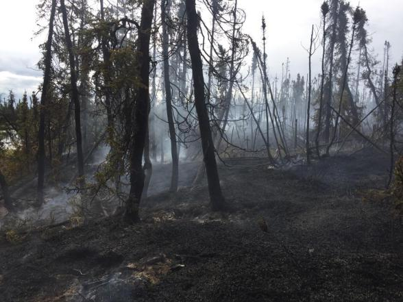 The Fires Hill Lake Fire (#390) burned 2.7 acres about 17 miles northeast of Lake Louise in the Copper River Forestry Area. Photo by Evan Karp//BLM Alaska Fire Service
