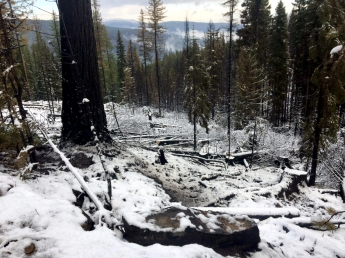 Snow covered the ground where Alaska emergency firefighters from the Upper Tanana #2 crew were working on the Caribou Fire on Sept. 19, 2017. Photo by Neal Charlie//Alaska Division of Forestry