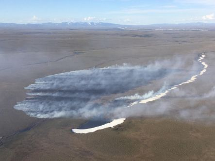 The 150-acre Wasp Creek Fire is burning south of Buckland in northwest Alaska. Photo by Ryan McPherson, BLM AFS
