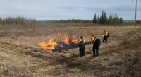Firefighters conduct a test burn to see if fuels are receptive to burning before doing a prescribed fire on the Small Arms Complex east of Fairbanks. Photo by Chris Demers, BLM AFS