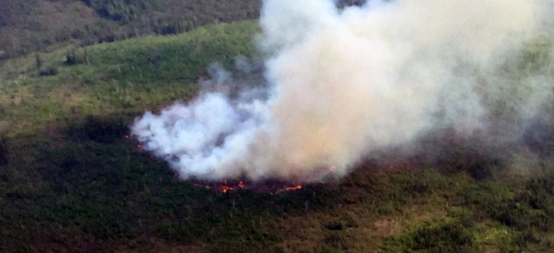 The Dome Creek Fire (#361) is burning in the Yukon-Charley Rivers National Preserve near several structures including cabins left from the Gold Rush days. Photo by Dustin Wessel, BLM AFS.