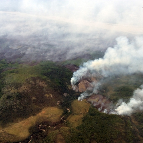 The Andrew Creek Fire (#366) is burning near the confluence of the Sam Creek and Yukon River in the Yukon-Charley Rivers National Preserve on July 26, 2018. Photo by Branden Petersen, BLM AFS