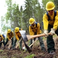 Photo of federal emergency firefighters candidates going through rookie training provided by BLM Alaska Fire Service in the spring of 2018.
