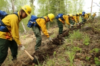 Photo of Emergency firefighter candidates learning how to dig line during BLM AFS rookie school in May 2018.