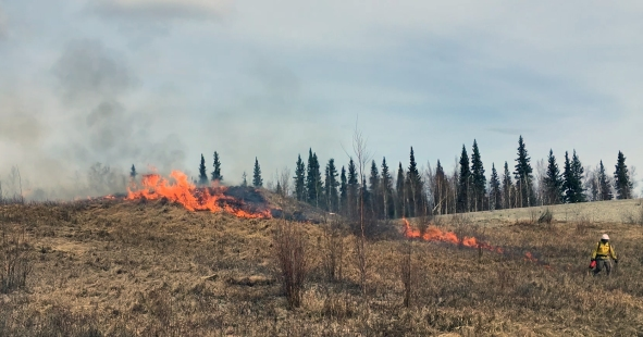 A firefighter uses a drip torch to light a prescribed burn within the Digital Multipurpose Training Range (DMPTR) in 2017 file photo.