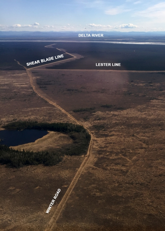 Photo taken from the air looking east along the fuel breaks toward the Delta River shows where the Winter Road, shear blade line constructed by the U.S. Army over the past three years, and what is referred to as the Lester Line, meet on the Donnelly Training Area west of the Delta River.