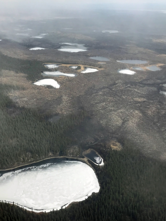Photo of the area where the Oregon Lakes Impact Area Fire is burning west of the Delta River on May 4, 2019.