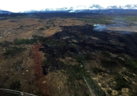 A burnout slopped over the containment line on Monday, but has also created a larger black buffer to prevent the Oregon Lakes Fire from progressing north as the summer progresses. Photo by Karen Scholl, BLM AFS