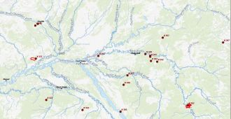 Firefighters working on fires in BLM AFS Upper Yukon, Tanana Zones on