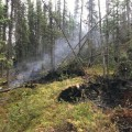 This photo illustrates the deep tundra firefighters are working in and how deep the fire is burning on the Caribou Creek Fire east of Fairbanks. Photo by Thomas Krock/Alaska Division of Forestry